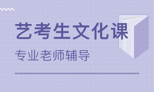 甘肃艺考生文化课冲刺